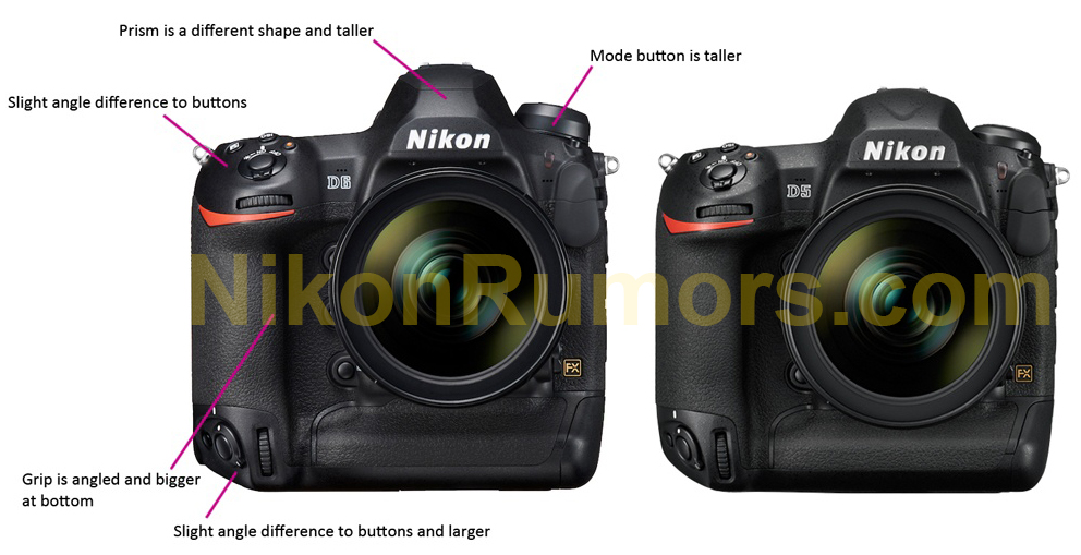 Nikon D5 vs  Nikon D6 comparison - Nikon Rumors